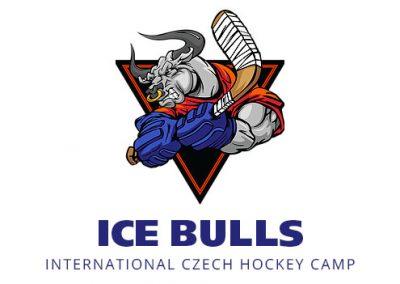 Ice Bulls Hockey Camp